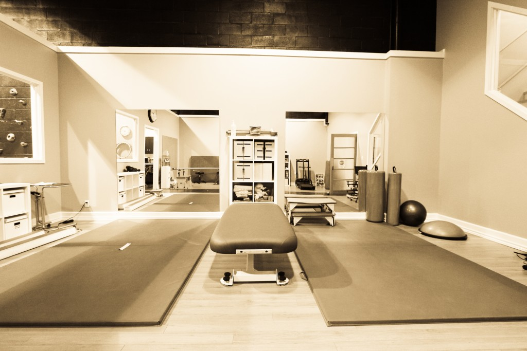 Butterfly Therapy main gym